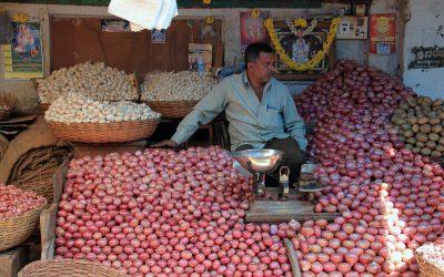 Zwiebelverkäufer